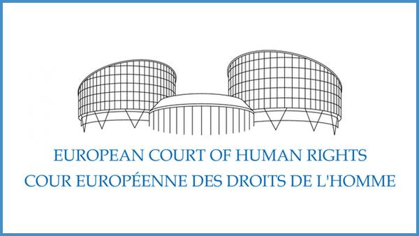 Aperçu de la jurisprudence de la CEDH pour l'année 2017