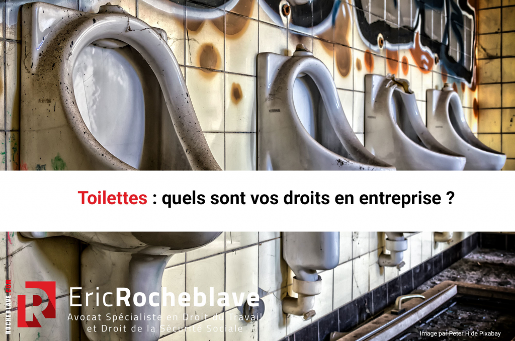 Journée Mondiale des toilettes : quels sont vos droits en entreprise ?