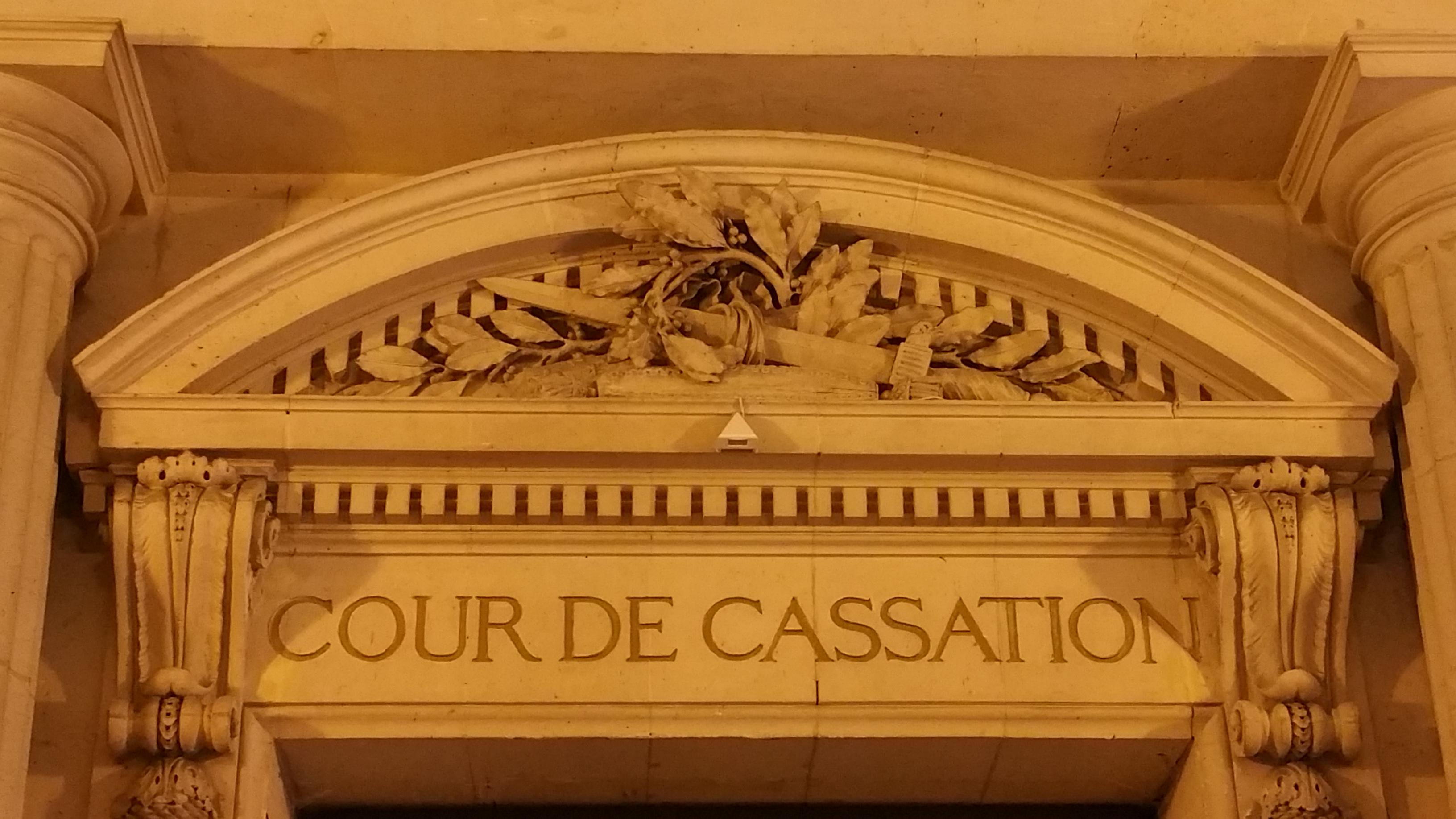 L'appel contre un jugement de mainlevée d'une curatelle renforcée n'est ouvert qu'au requérant !