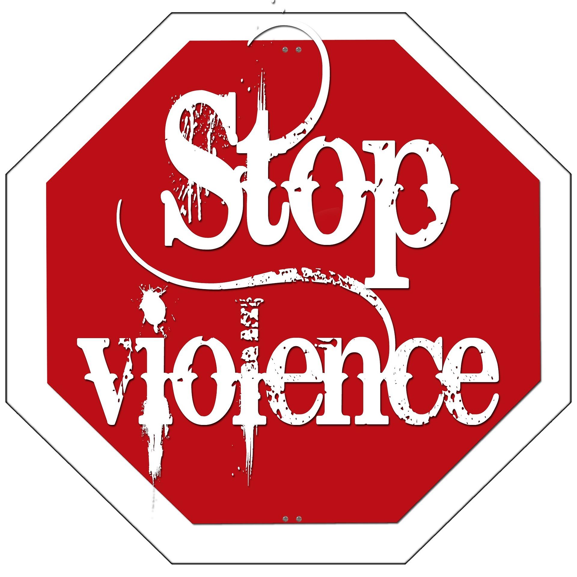 L'ORDONNANCE DE PROTECTION APRES LA LOI DU 28 DECEMBRE 2019 : UNE PROTECTION RENFORCEE POUR LES VICTIMES DE VIOLENCES FAMILIALES