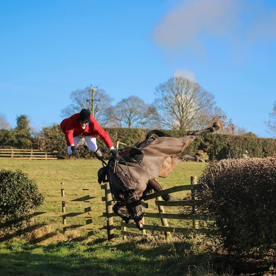 Le rabat à l'aide d'un cheval lors d'une chasse à tir constitue un moyen d'une chasse prohibé. (Droit pénal - Chasse)