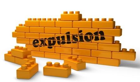 Droit de propriété / Occupation sans droit ni titre / Expulsion