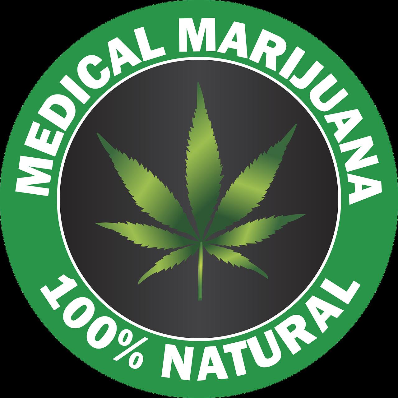 En France, le pétard mouillé du cannabis thérapeutique