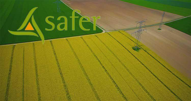 Mise à disposition de terres au profit de la SAFER, laquelle loue (ou plutôt sous-loue) ces terres à un exploitant choisi par elle. Une solution d'attente.