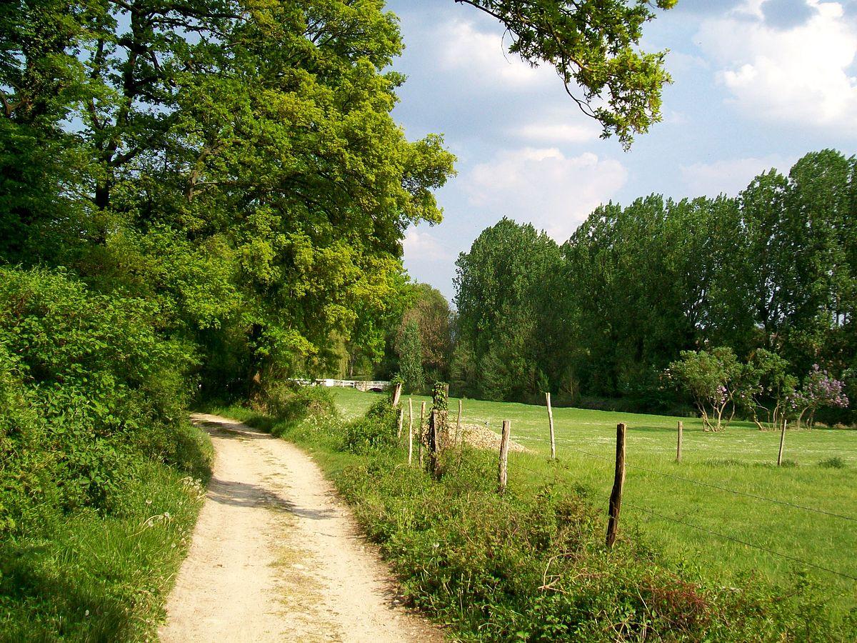 La commune doit-elle entretenir le chemin rural ?